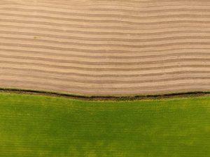 ירושת נחלה – ירושת משק חקלאי