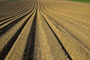 הפשרת קרקעות - שינוי ייעוד - הפשרת קרקע חקלאית