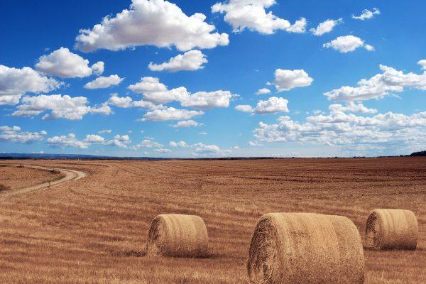 רשות מקרקעי ישראל אורח החיים הכפרי